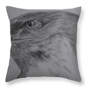 Eagle Eyed. Throw Pillow by Cynthia Adams