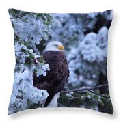 Eagle In A Frosted Tree Throw Pillow