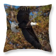 Eagle In Fall Throw Pillow