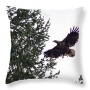 Eagle In Flight Throw Pillow by Ben Upham III