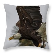 Eagle In Flight With Fish Throw Pillow