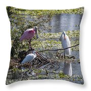 Eagle Lakes Park - Roseate Spoonbill And Friends, Socializing Throw Pillow