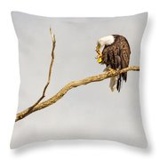 Eagle Nail Biting  Throw Pillow
