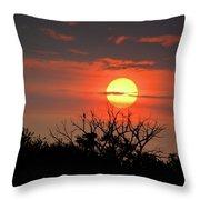 Eagle Nest Sunrise Throw Pillow