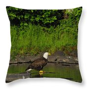 Eagle On A River Rock Throw Pillow