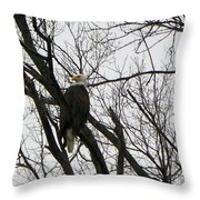Eagle On Old Dump Road Throw Pillow