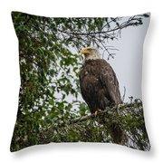 Eagle Feet Throw Pillow