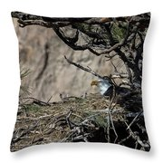 Eagle On The Nest, No. 3 Throw Pillow