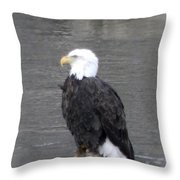 Eagle On The River Throw Pillow