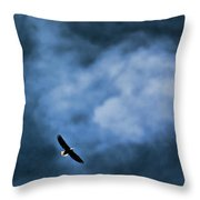 Eagle Over River And Shiloh Throw Pillow