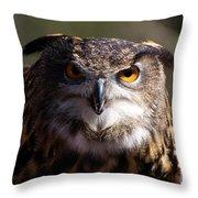 Eagle Owl 3 Throw Pillow