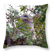 Eagle Owl Chick Throw Pillow