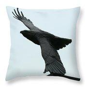 Eagle Park Throw Pillow