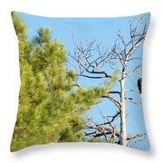 Eagle Perch Throw Pillow