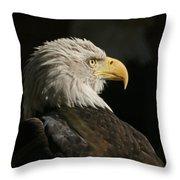Eagle Profile 1 Original Photo Throw Pillow