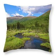 Eagle River- Alaska Throw Pillow