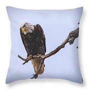Eagle Searching Throw Pillow