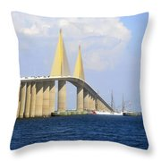 Eagle Under The Sunshine Throw Pillow by David Lee Thompson