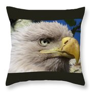 Eagle Wise Throw Pillow