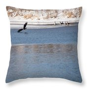 Eagles On The Fox - 1 Throw Pillow