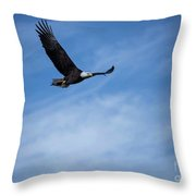Eagles On The Fox - 3 Throw Pillow