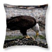 Eagle's Prize Throw Pillow
