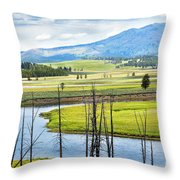 Eagles View, Hayden Valley, Yellowstone Throw Pillow