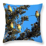 Ear-full Of Waxwings Throw Pillow