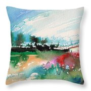 Early Afternoon 13 Throw Pillow