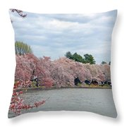Early Arrival Of The Japanese Cherry Blossoms 2016 Throw Pillow