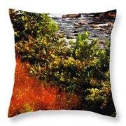 Early Autumn Along The Naugatuck Throw Pillow