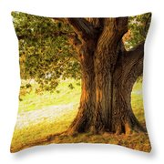 Early Autumn Oak Throw Pillow