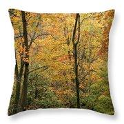 Early Autumn Throw Pillow