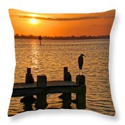 Early Birds Throw Pillow