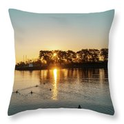 Early Birds In Teal And Orange Throw Pillow