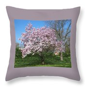 Early Blooms Throw Pillow