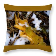 Early Bury No.3 Throw Pillow