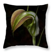 Early Cobra Orchid Throw Pillow