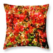 Early Color Painting Throw Pillow