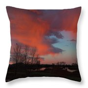 Early Dawn In The Wetlands Throw Pillow
