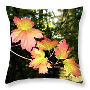 Early Days Of Autumn Throw Pillow