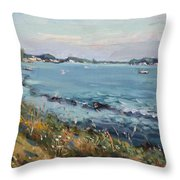 Early Evening At Gratwick Waterfront Park Throw Pillow