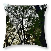 Early Evening Sunset Through The Trees Throw Pillow