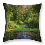 Early Fall At Montauk State Park  Throw Pillow