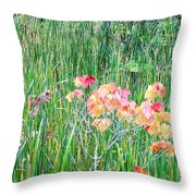 Early Fall Color Throw Pillow