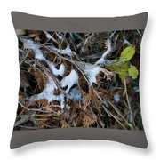 Early Ice No.2 Throw Pillow