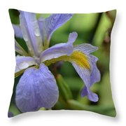 Early Iris Throw Pillow