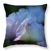 Early Iris Sunshine Throw Pillow