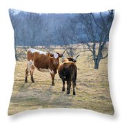 Early March Throw Pillow