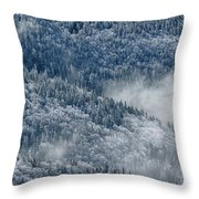 Early Morning After A Snowfall Throw Pillow
